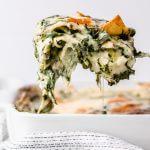 vegetarische, witte lasagne met spinazie