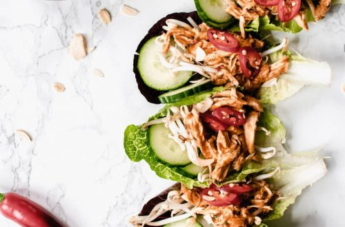 koolhydraatarme salade schuitjes met pulled chicken